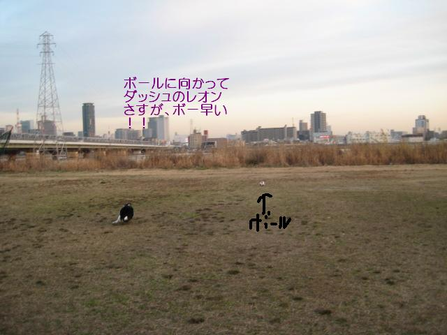 Img_3109_2